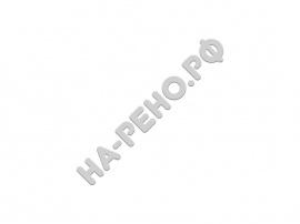 Книга Рено Дастер. Арус - Фото 1